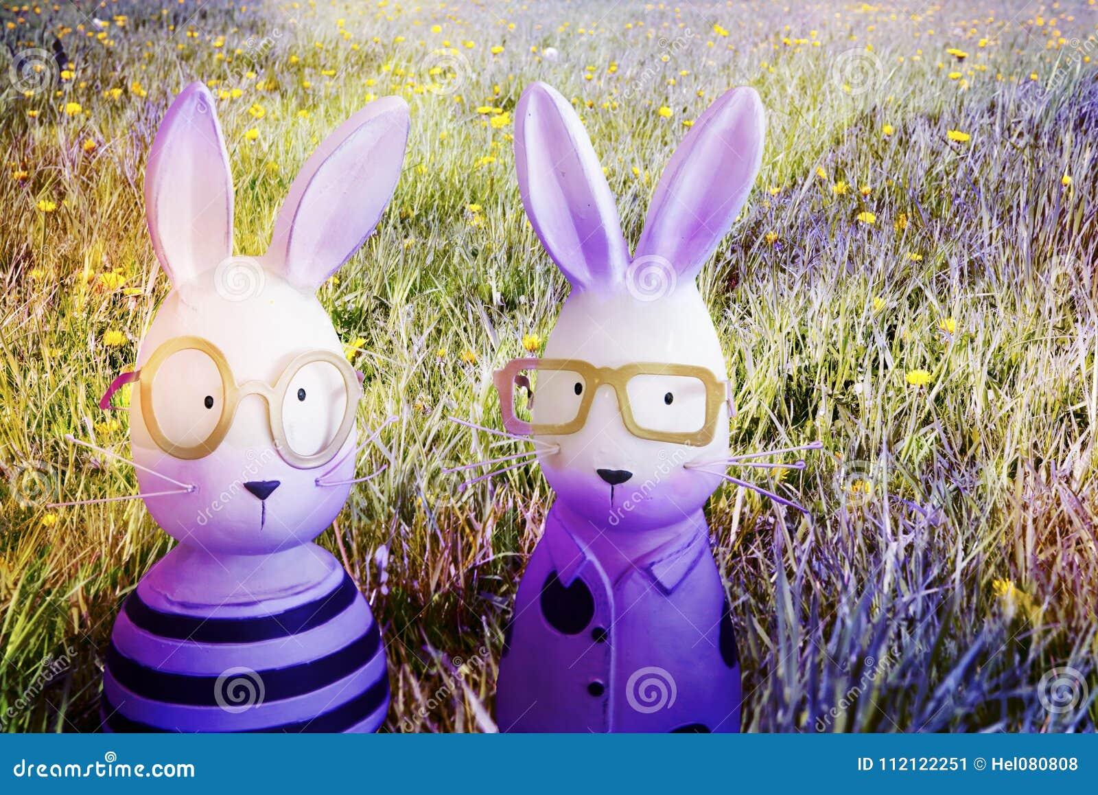 紫罗兰色复活节兔子在春天草甸