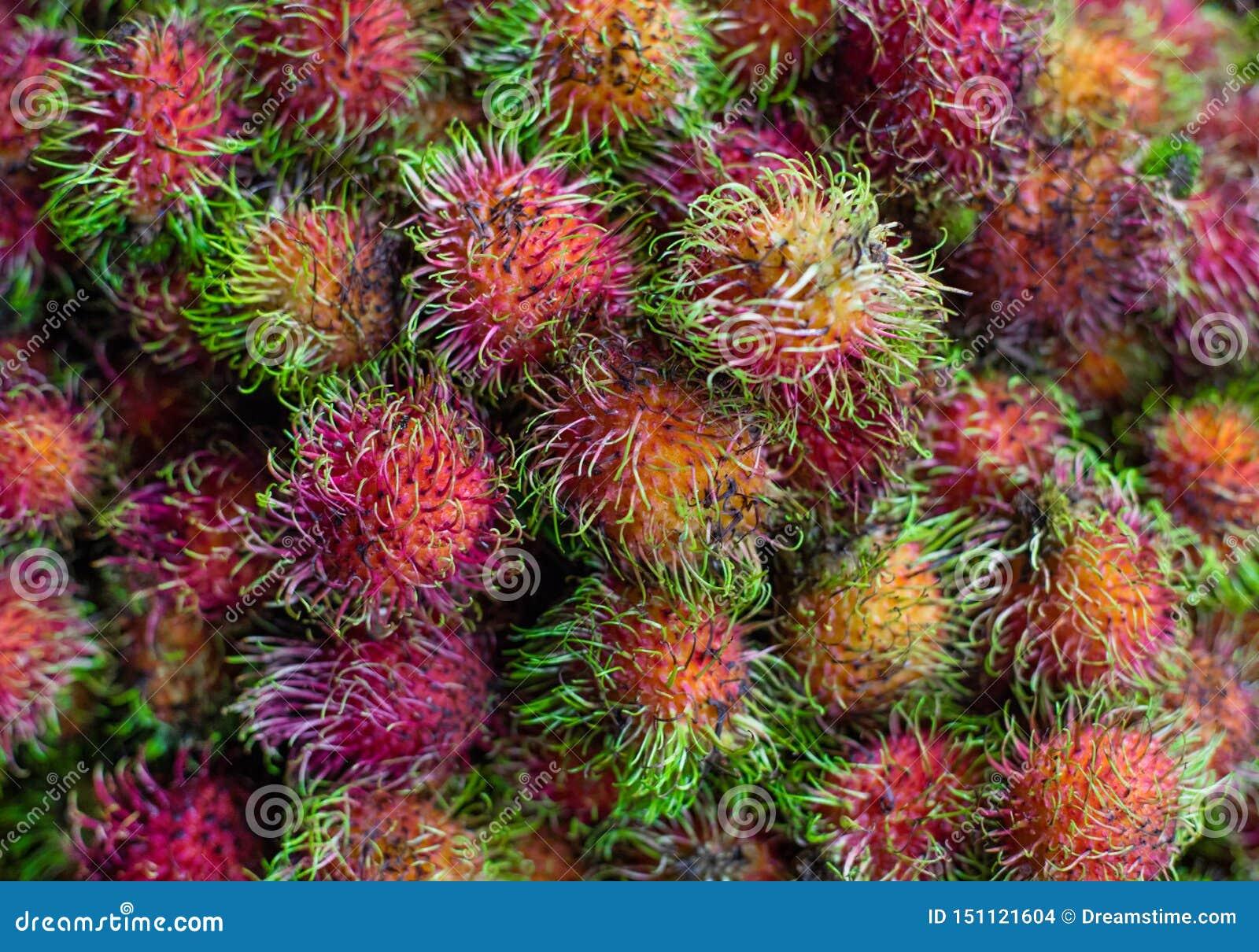 红毛丹 甜异乎寻常的热带水果 ?? 亚洲,越南,食物市场