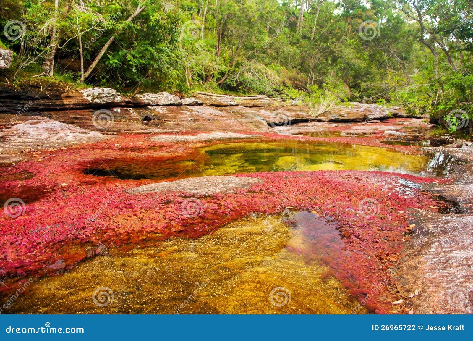 红色和黄河在哥伦比亚