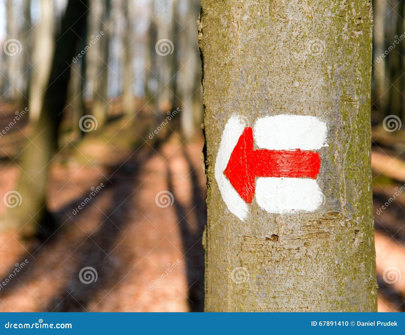 红色游人或供徒步旅行的小道签署在树树的标志