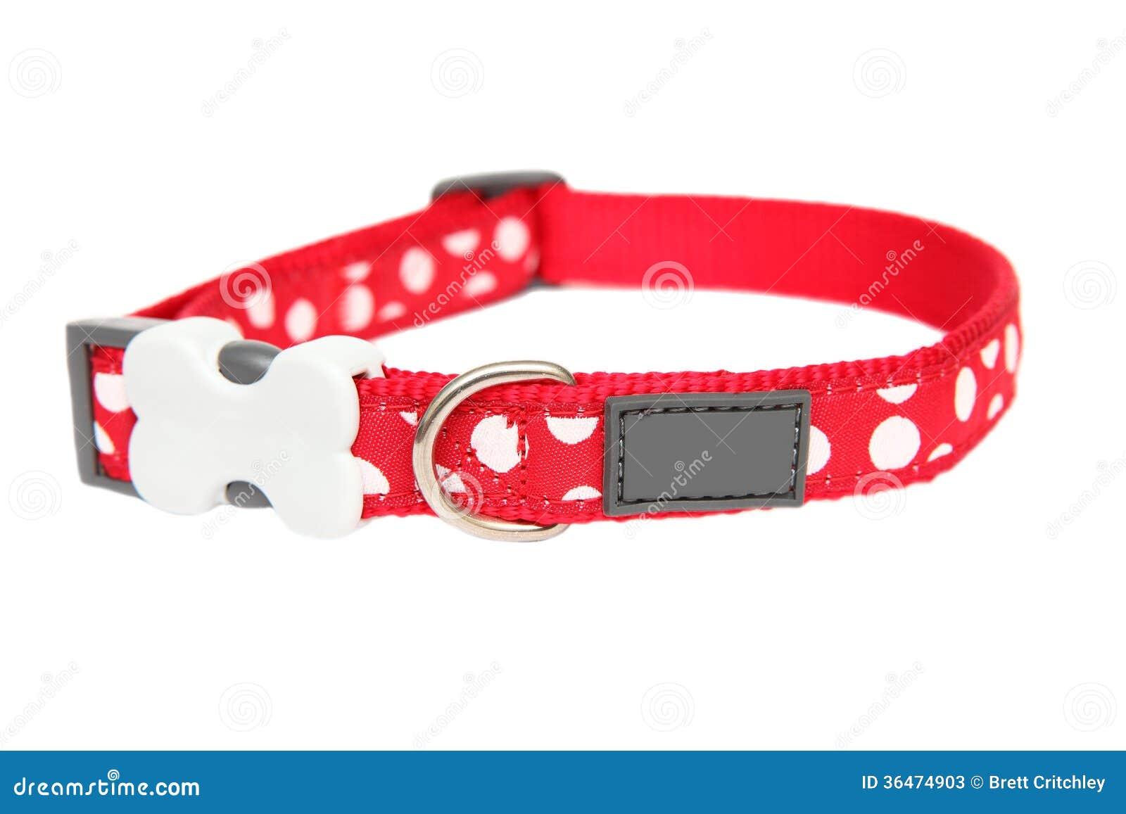 红色狗项圈
