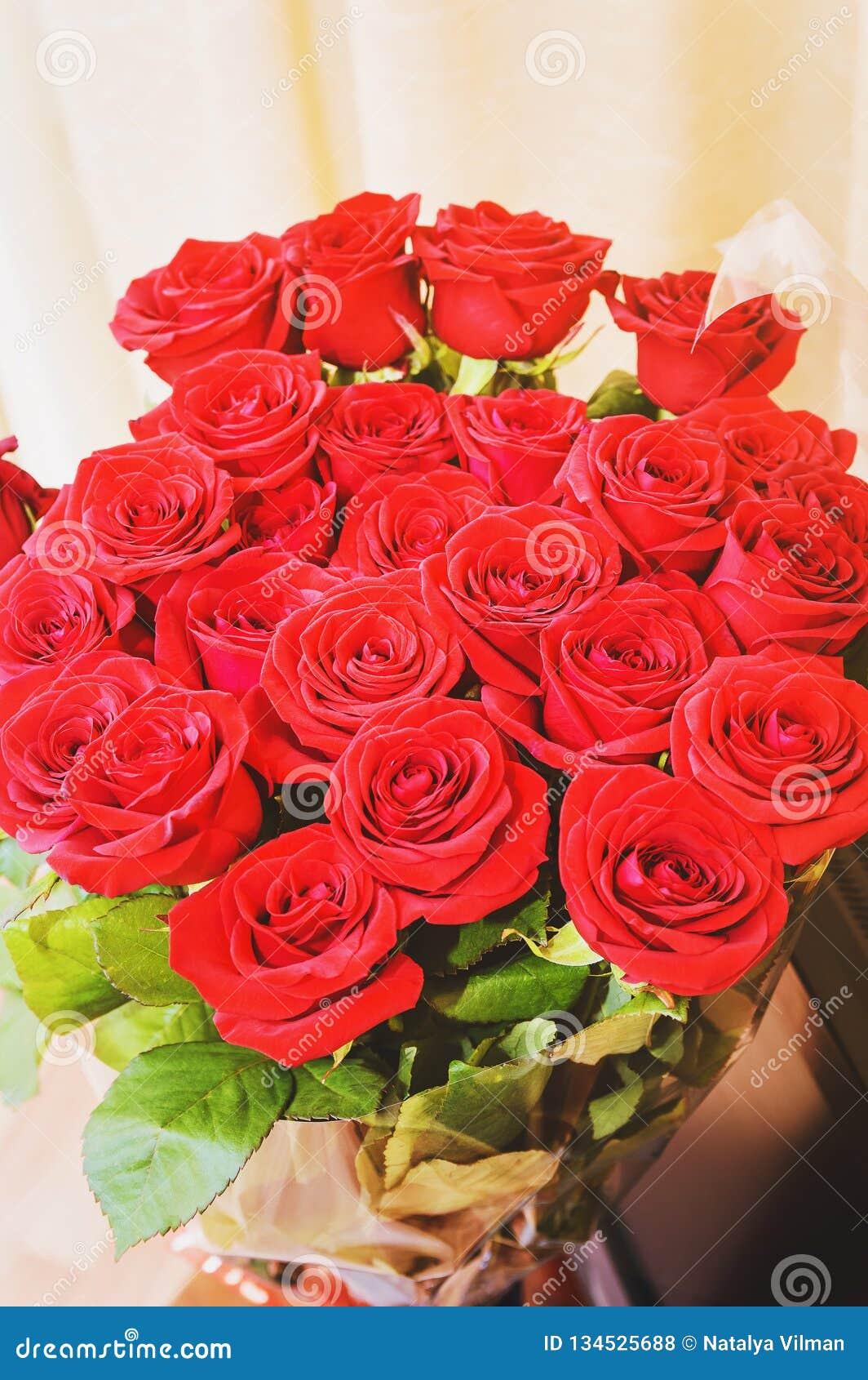 红色玫瑰 特写镜头,选择聚焦