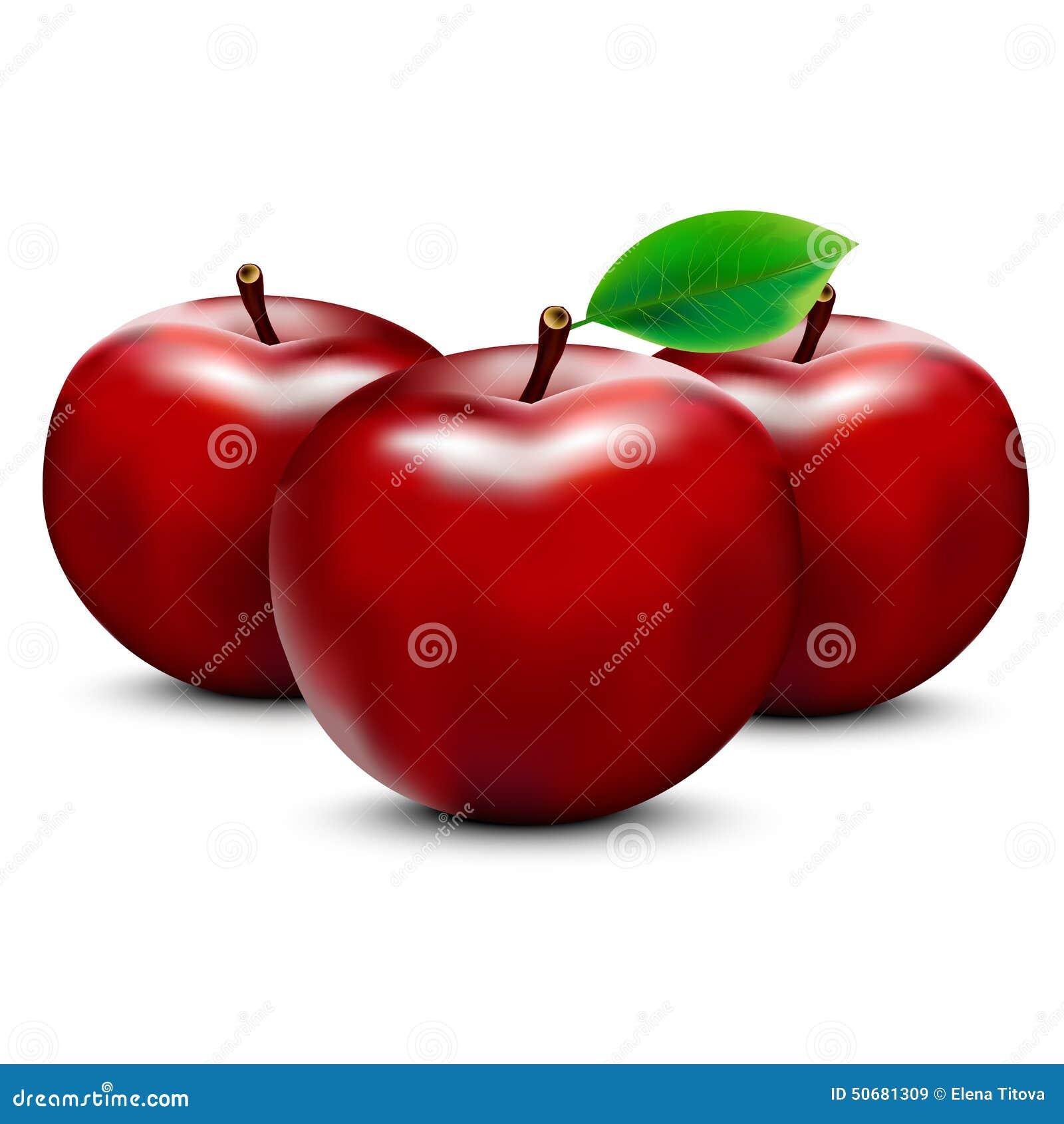 Download 红色的苹果 向量例证. 插画 包括有 应用, 食物, 健康, 颜色, 生气勃勃, 水多, 可口, 申请人 - 50681309