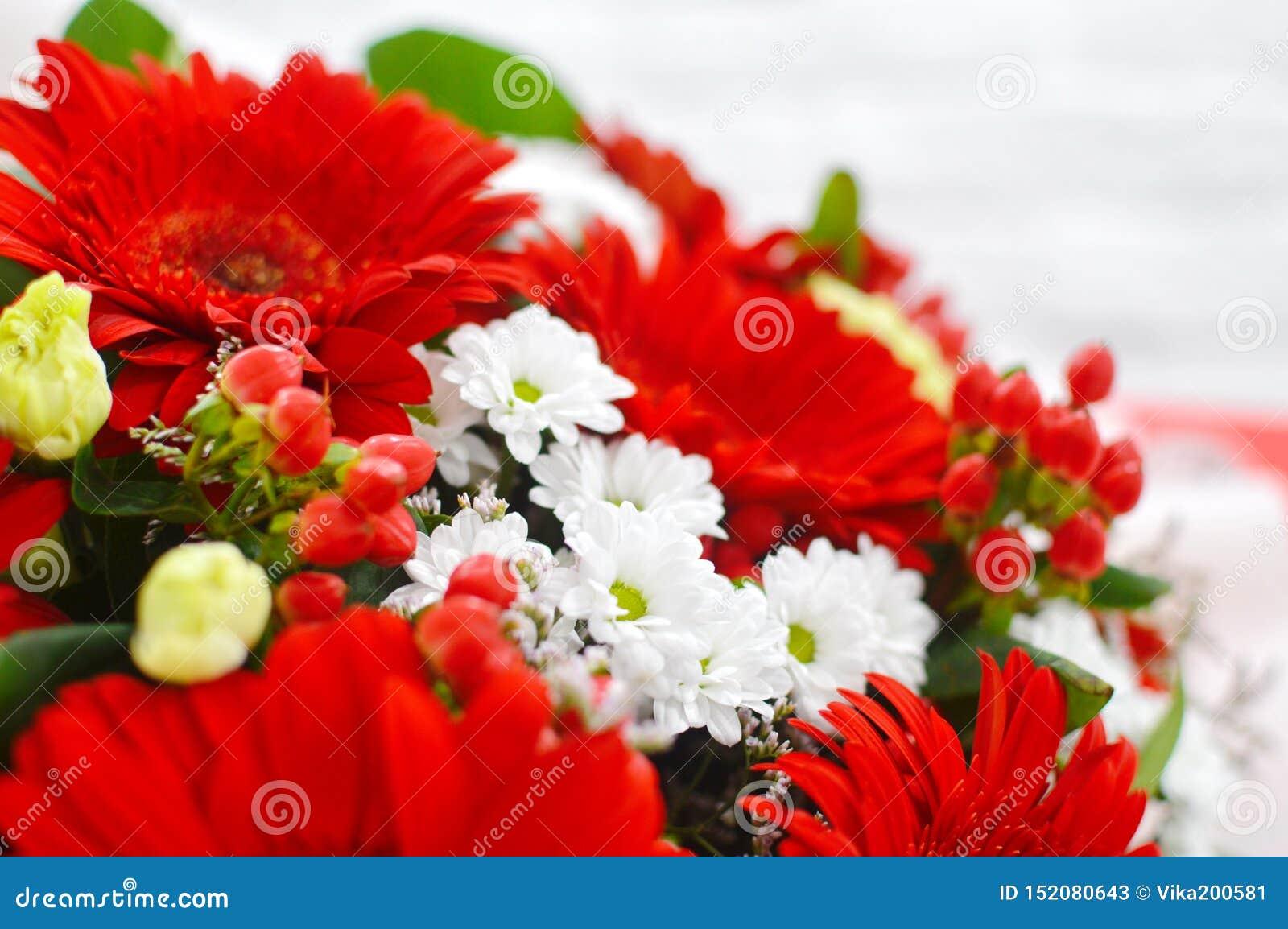 红色花花背景