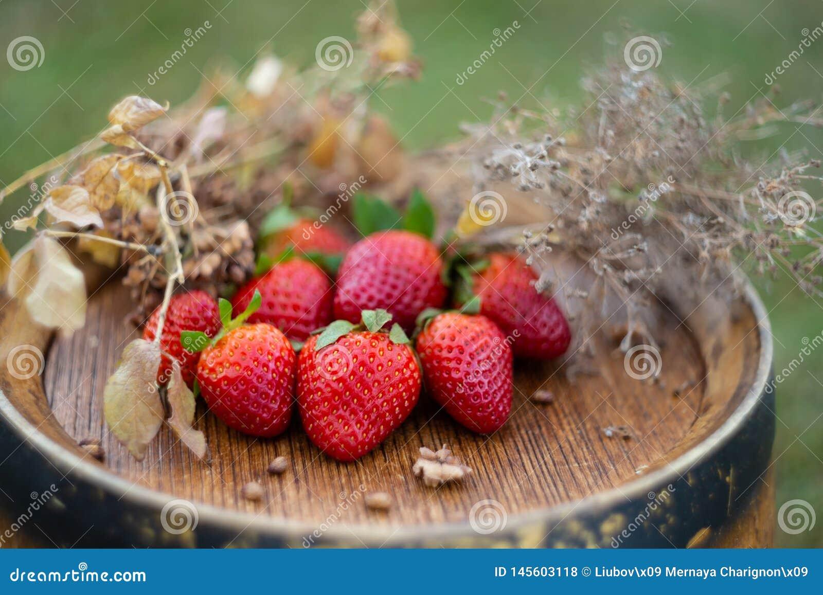 红色草莓和干草在一个木葡萄酒桶
