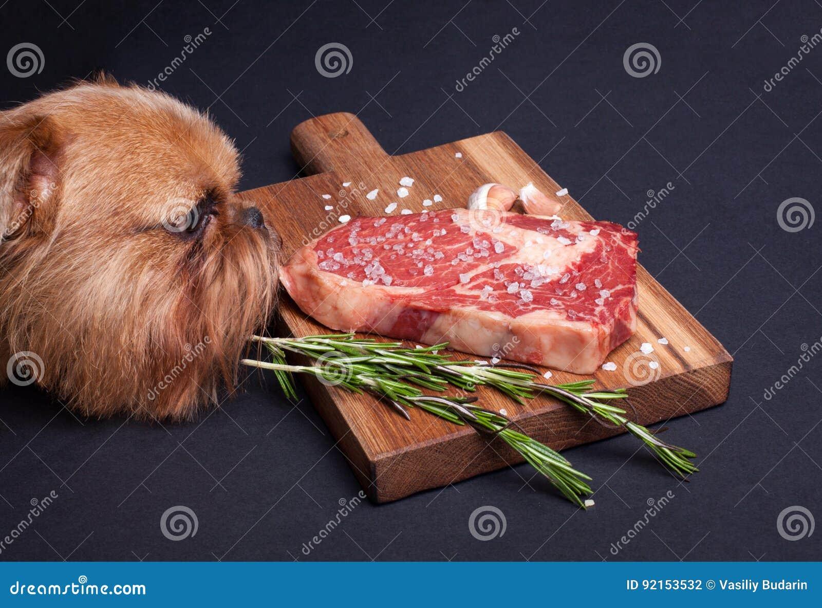 红色饥饿的狗设法窃取大理石肉片断从桌的 牛排ribeye用在一个木板的香料