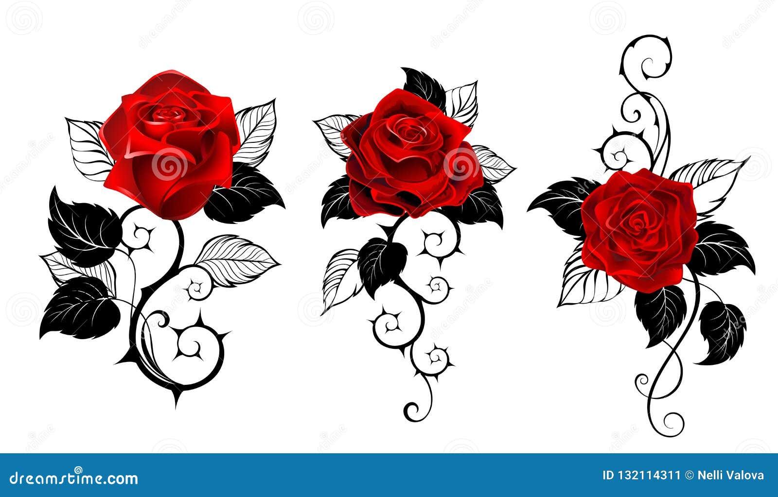 纹身花刺的三英国兰开斯特家族族徽