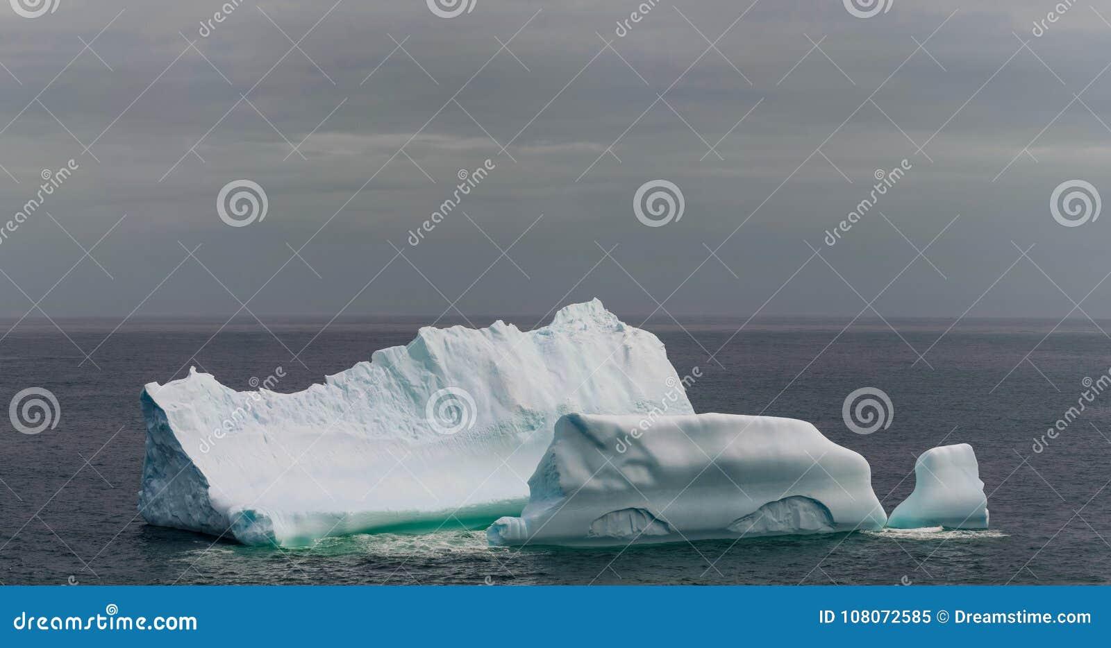 纽芬兰海岸的冰山