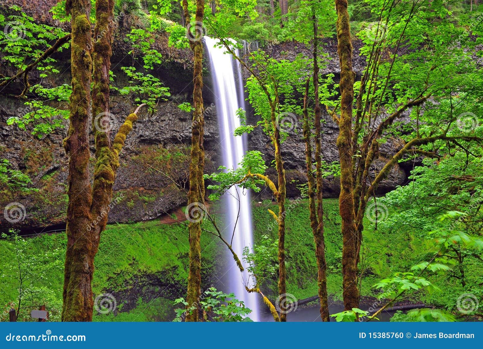 结构树瀑布