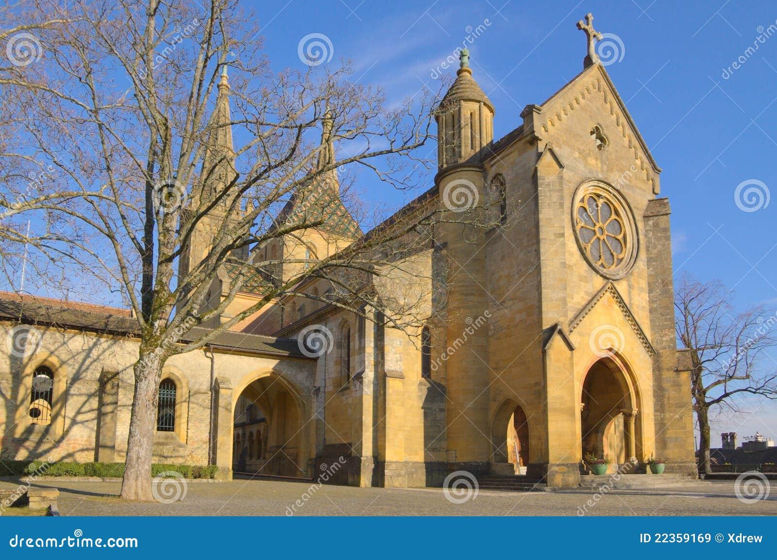 结构树的宽容大教堂