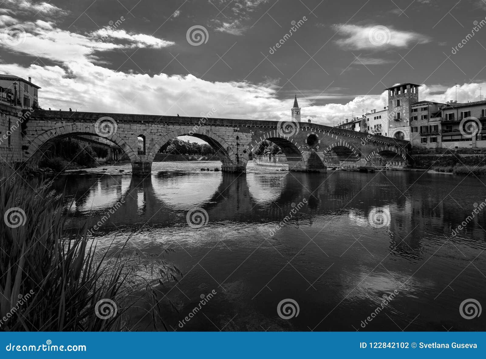 维罗纳 桥梁的看法在河的