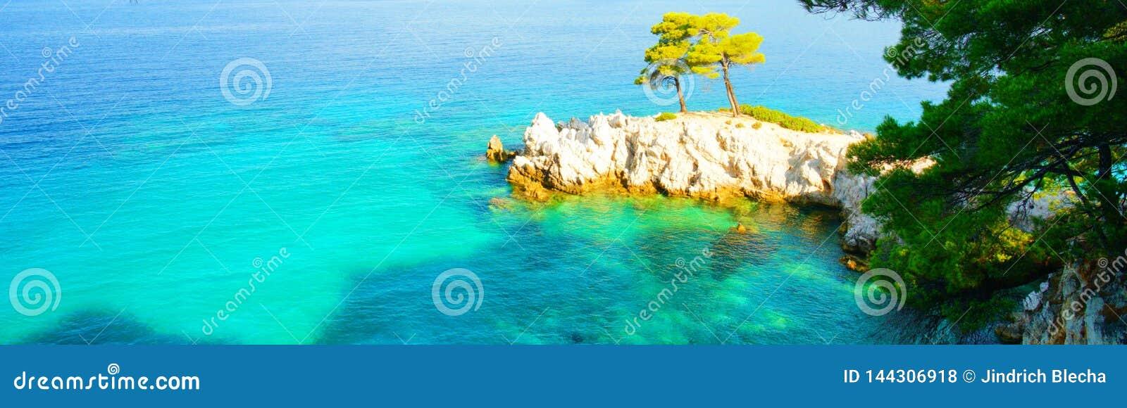 绿松石水、松树和斯科派洛斯岛,希腊岩石海岸线