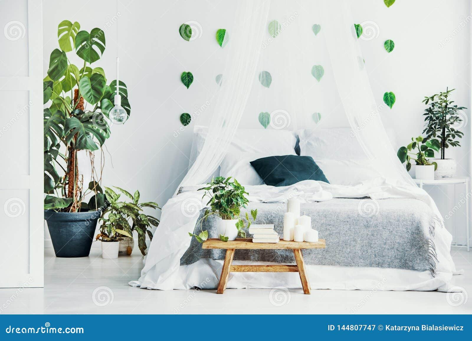 绿色植物和蜡烛在长木凳在时兴的卧室内部与机盖