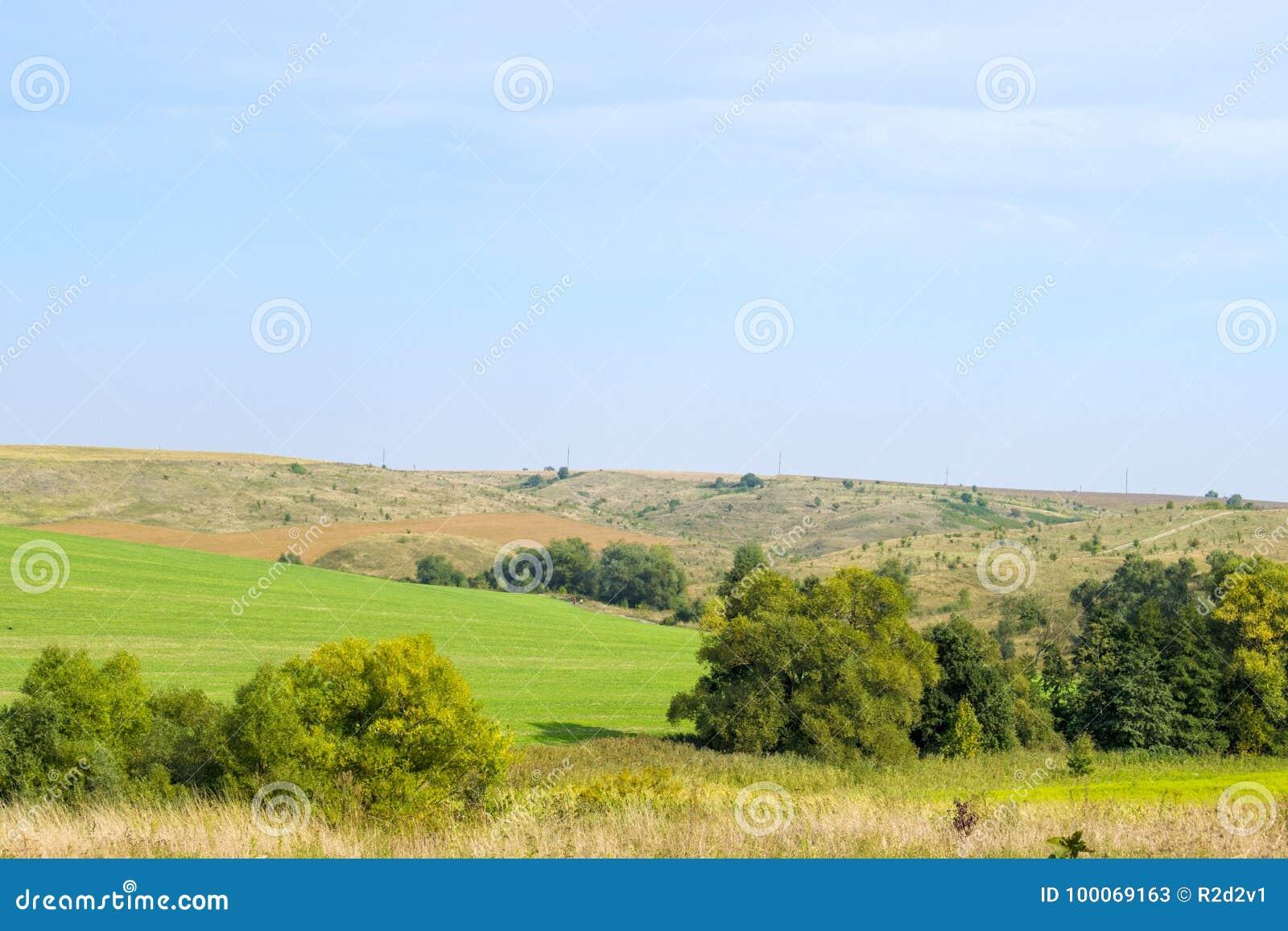 绿色领域和处女土地