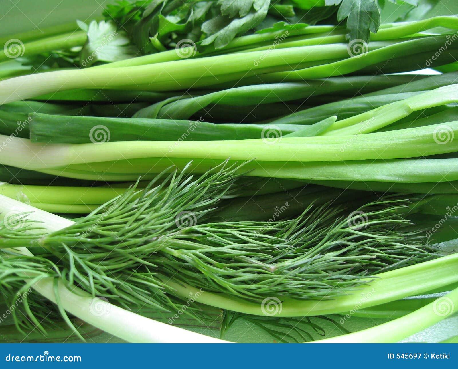 Download 绿色 库存图片. 图片 包括有 调味料, 香料, 健康, 类似, 词根, 食物, 美味, 绿色, 关闭, 宏指令 - 545697