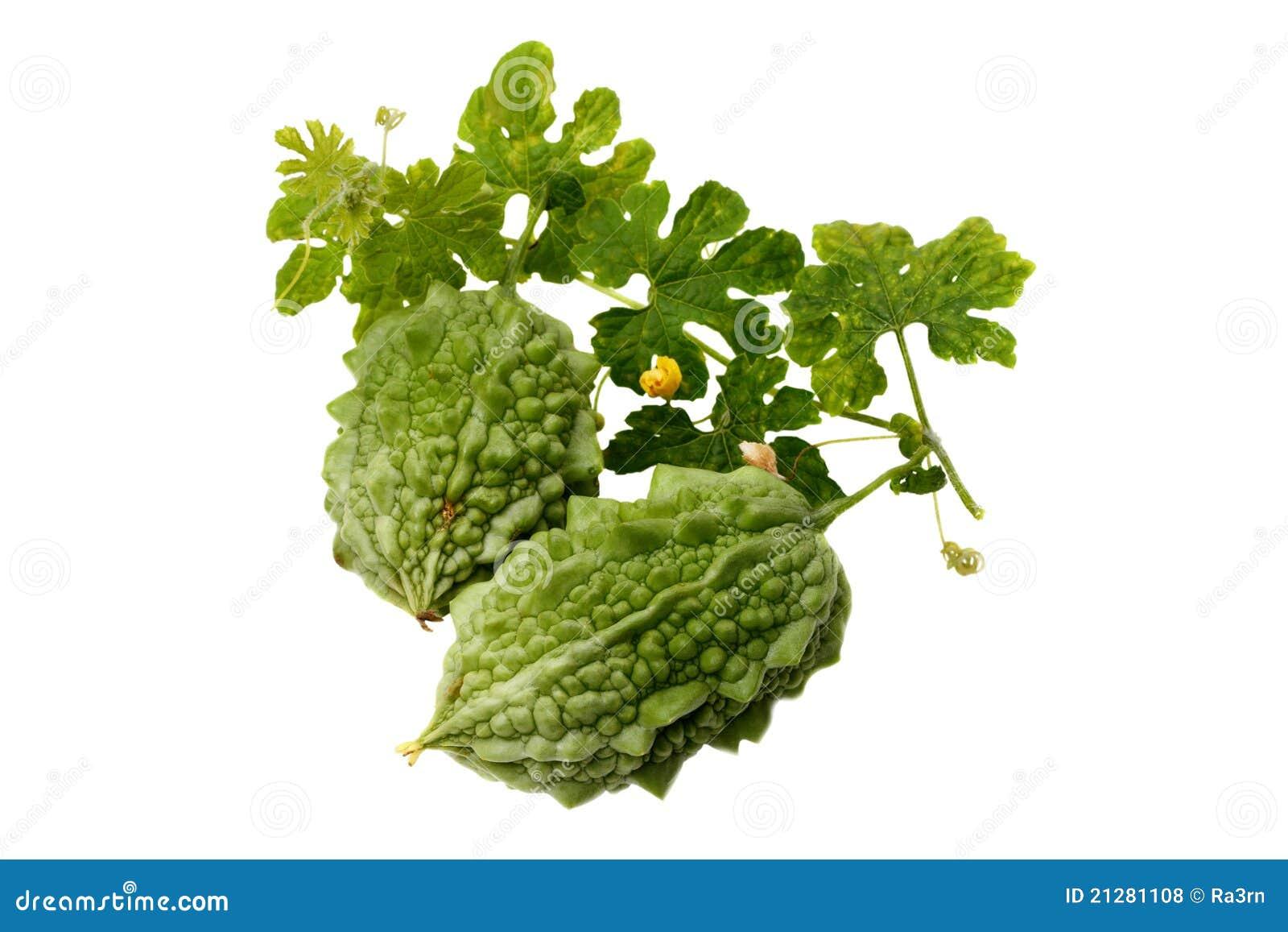 绿色momordika