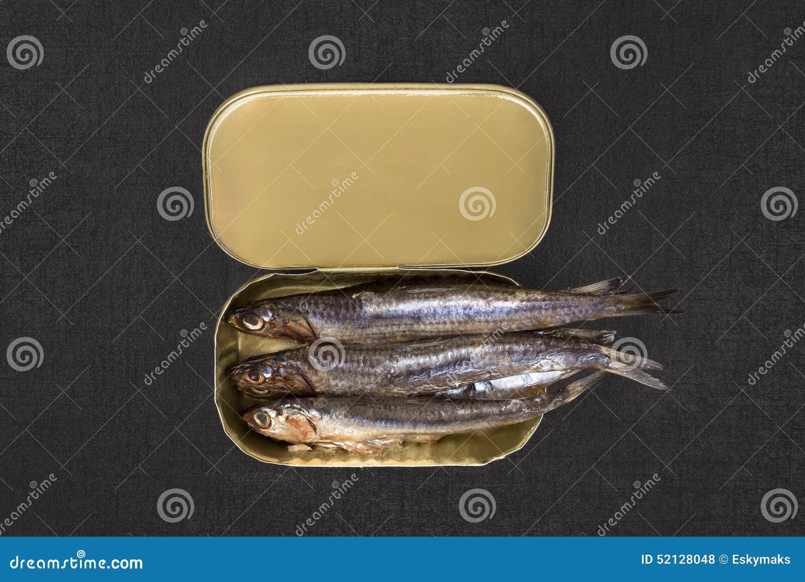 罐装沙丁鱼