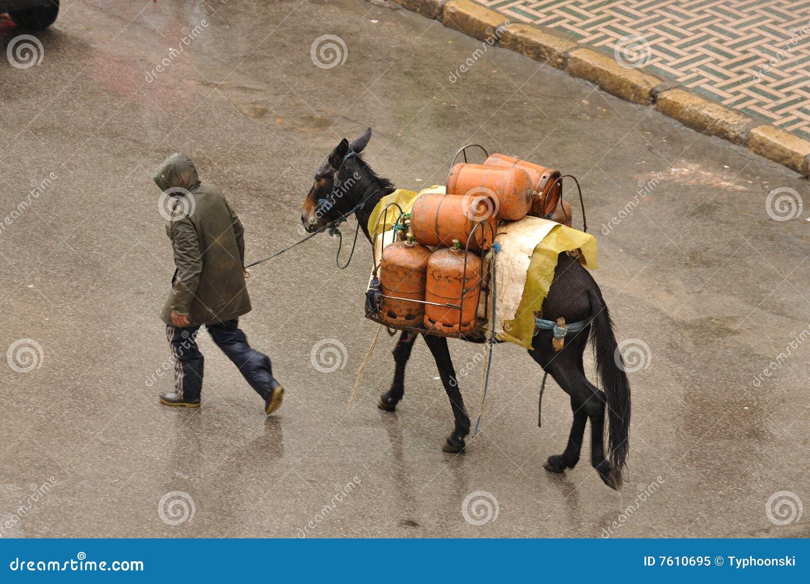 罐装液化气摩洛哥运输