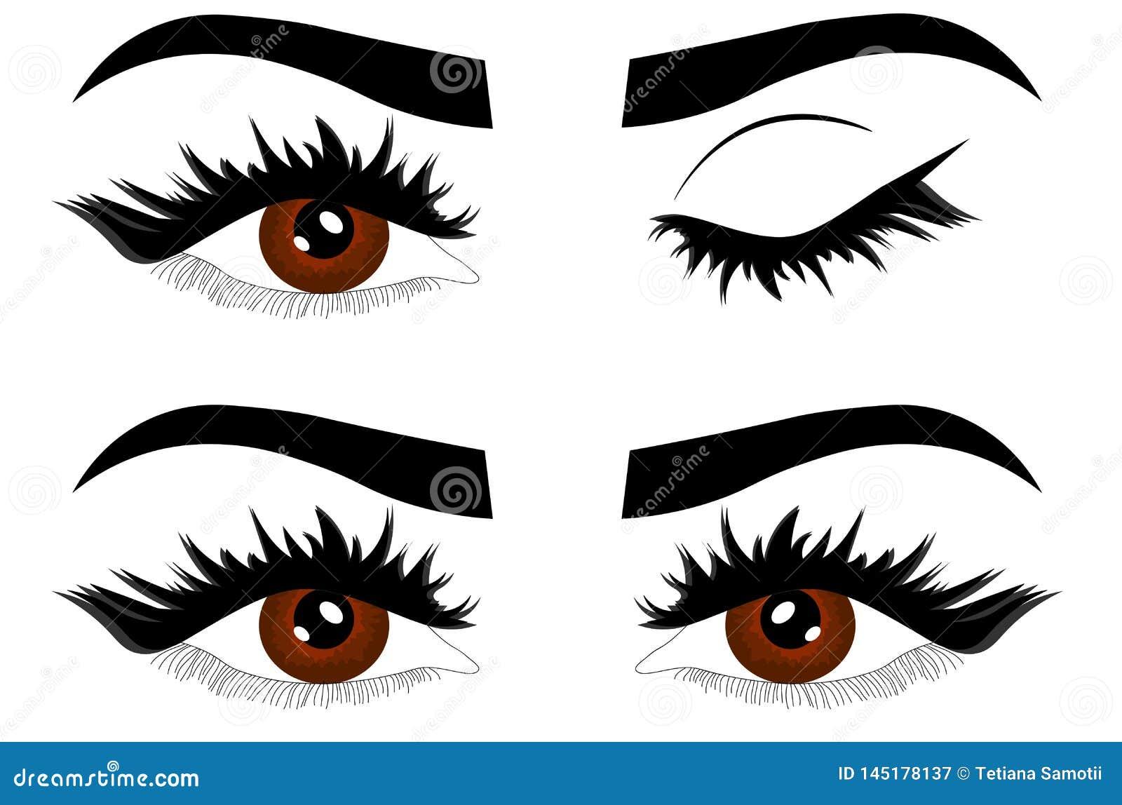 网特写镜头美丽的女性棕色眼睛的细节例证与闭合的眼皮的开放和