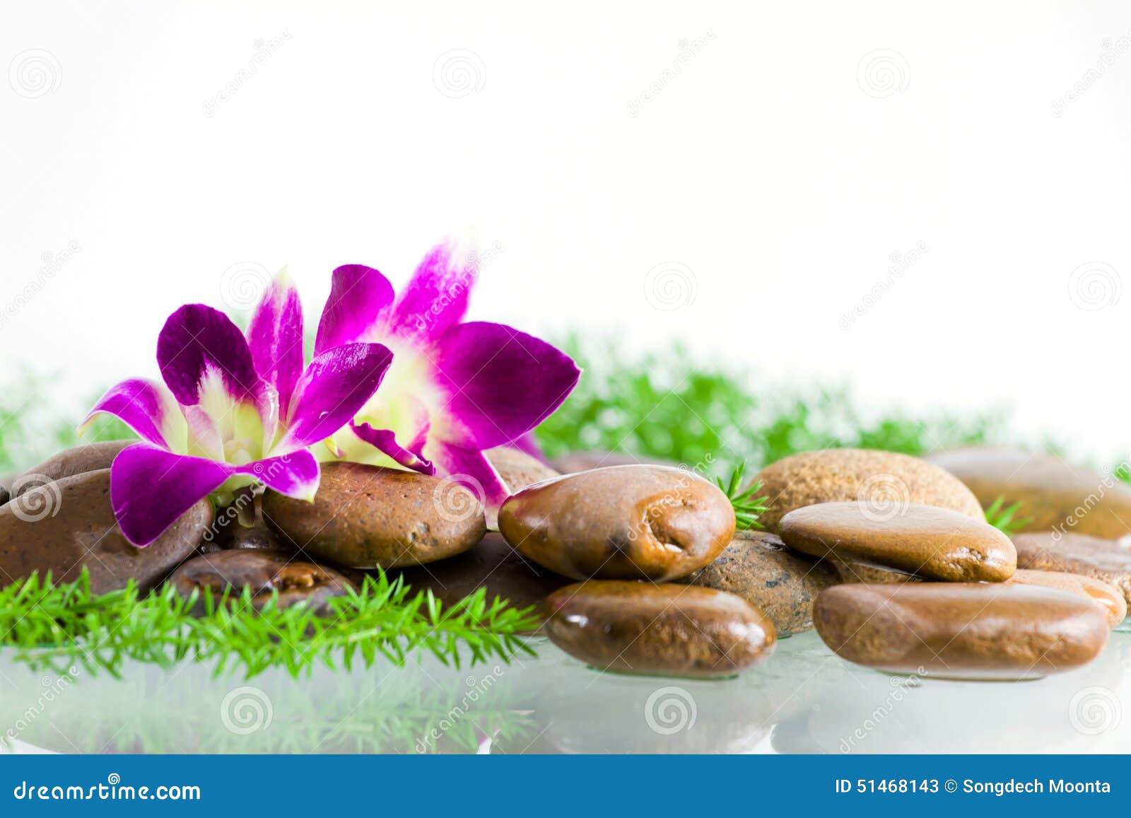 紫罗兰色兰花花