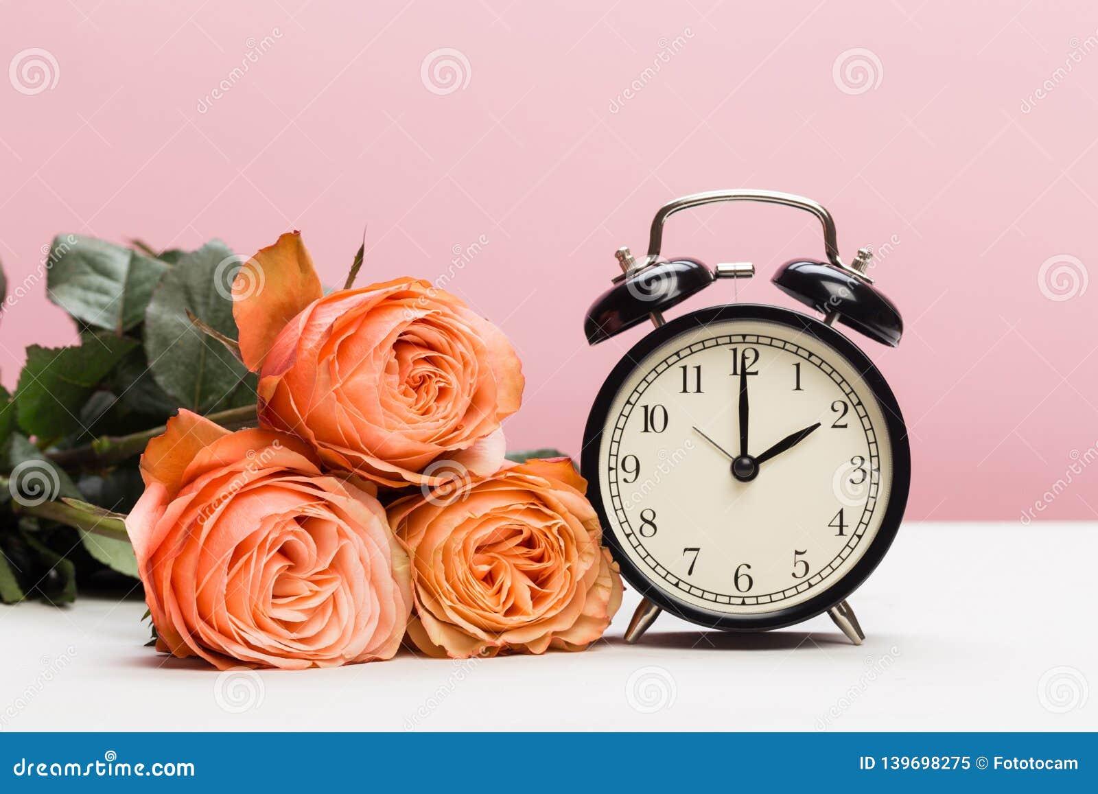 罗斯玫瑰和时钟在桃红色背景,夏令时