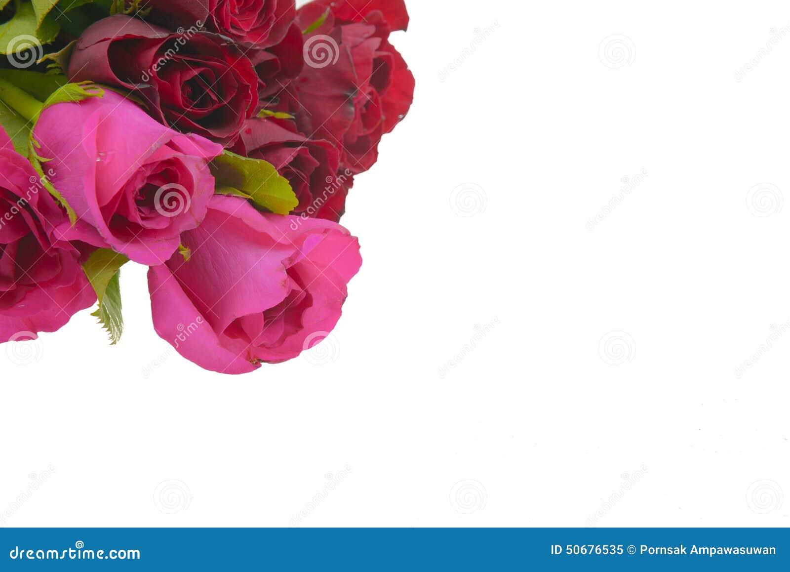 Download 罗斯 库存图片. 图片 包括有 庆祝, 设计, 存在, 礼品, 明信片, 生日, beauvoir, beautifuler - 50676535