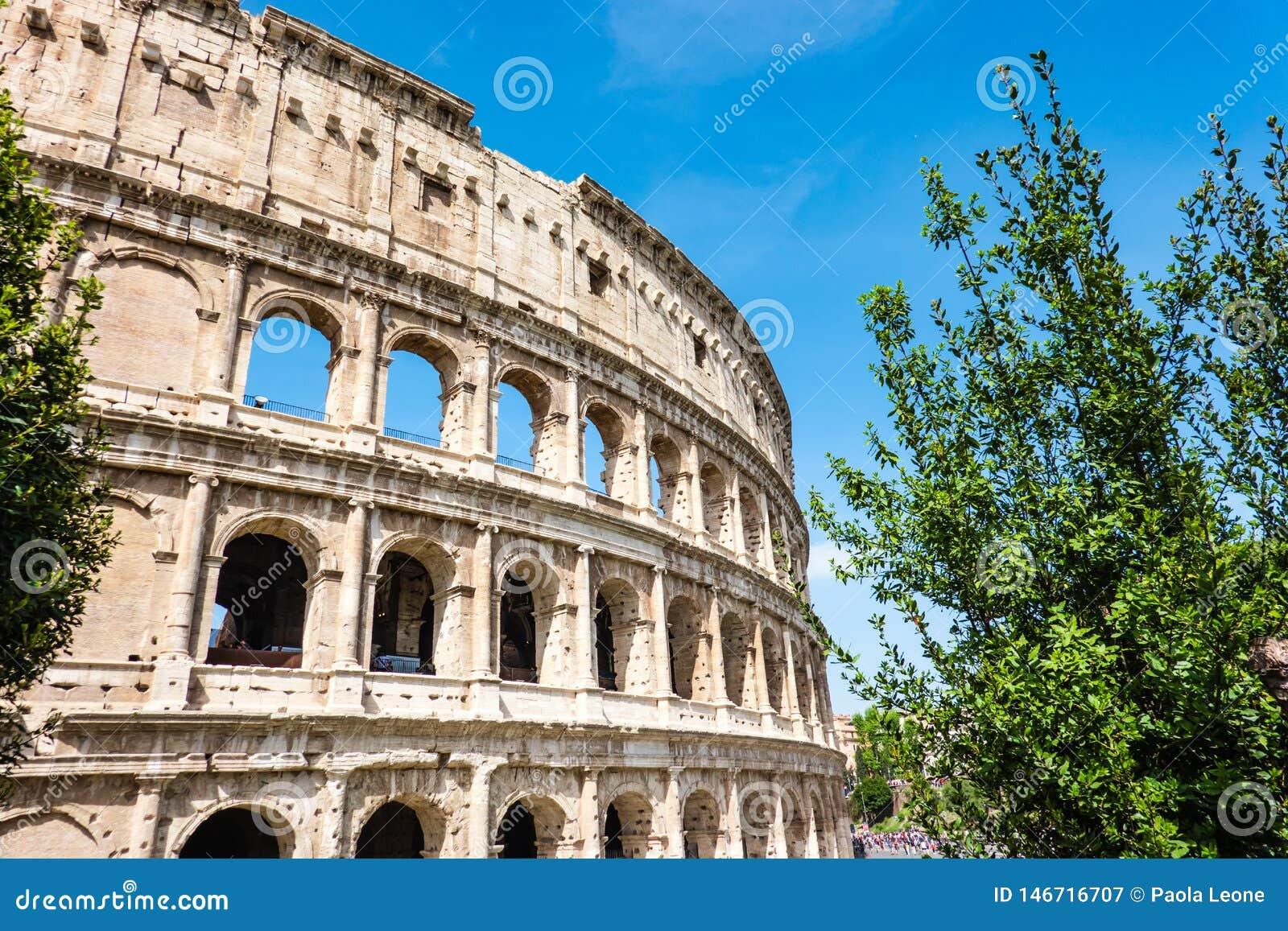 罗马,意大利:亦称伟大的罗马罗马斗兽场大剧场,罗马竞技场Flavian圆形露天剧场,有绿色树的 著名世界lan