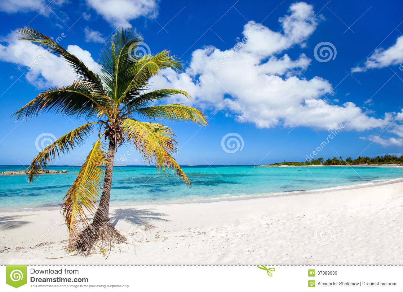 美丽的加勒比海滩