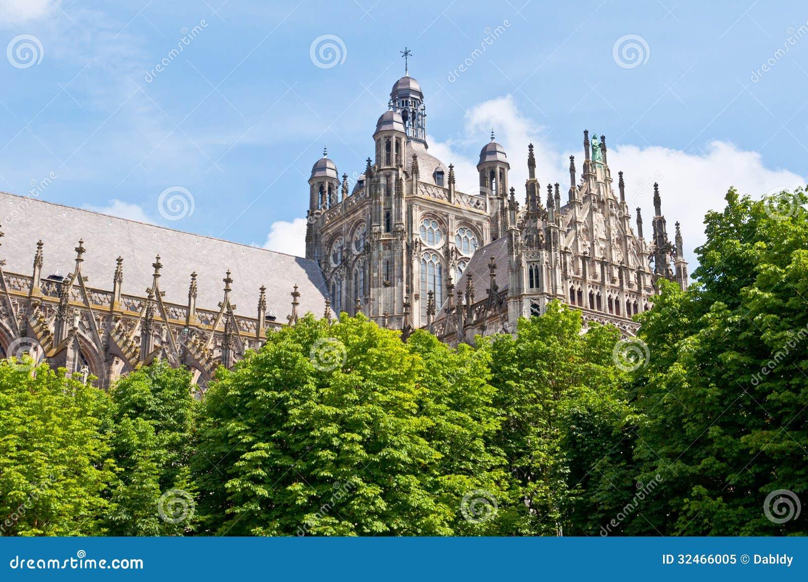美丽的哥特式样式大教堂在登博斯,荷兰