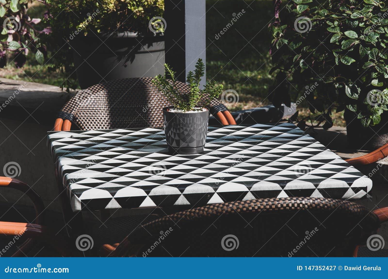美丽的大阳台,阳台,有在小checky桌和木椅子上的花盆的 r