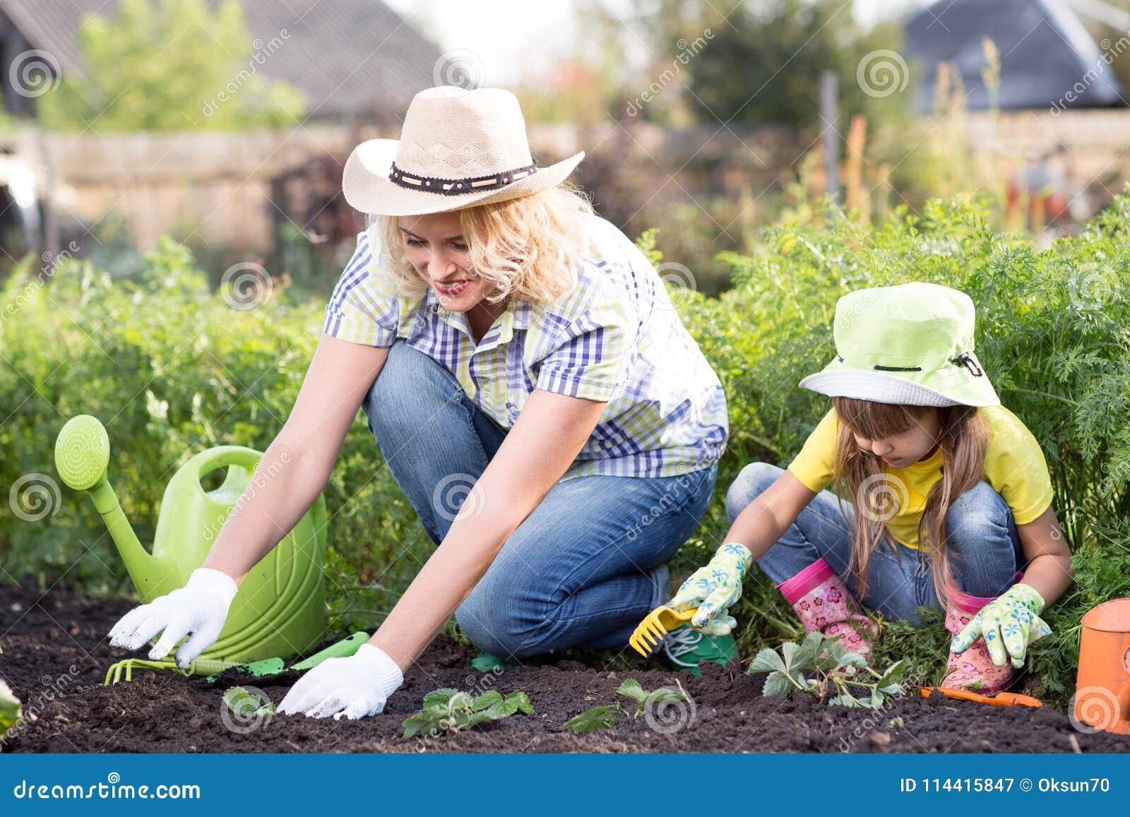 美丽的妇女和chid女儿在床上的种植幼木在国内庭院里夏日 从事园艺的活动与