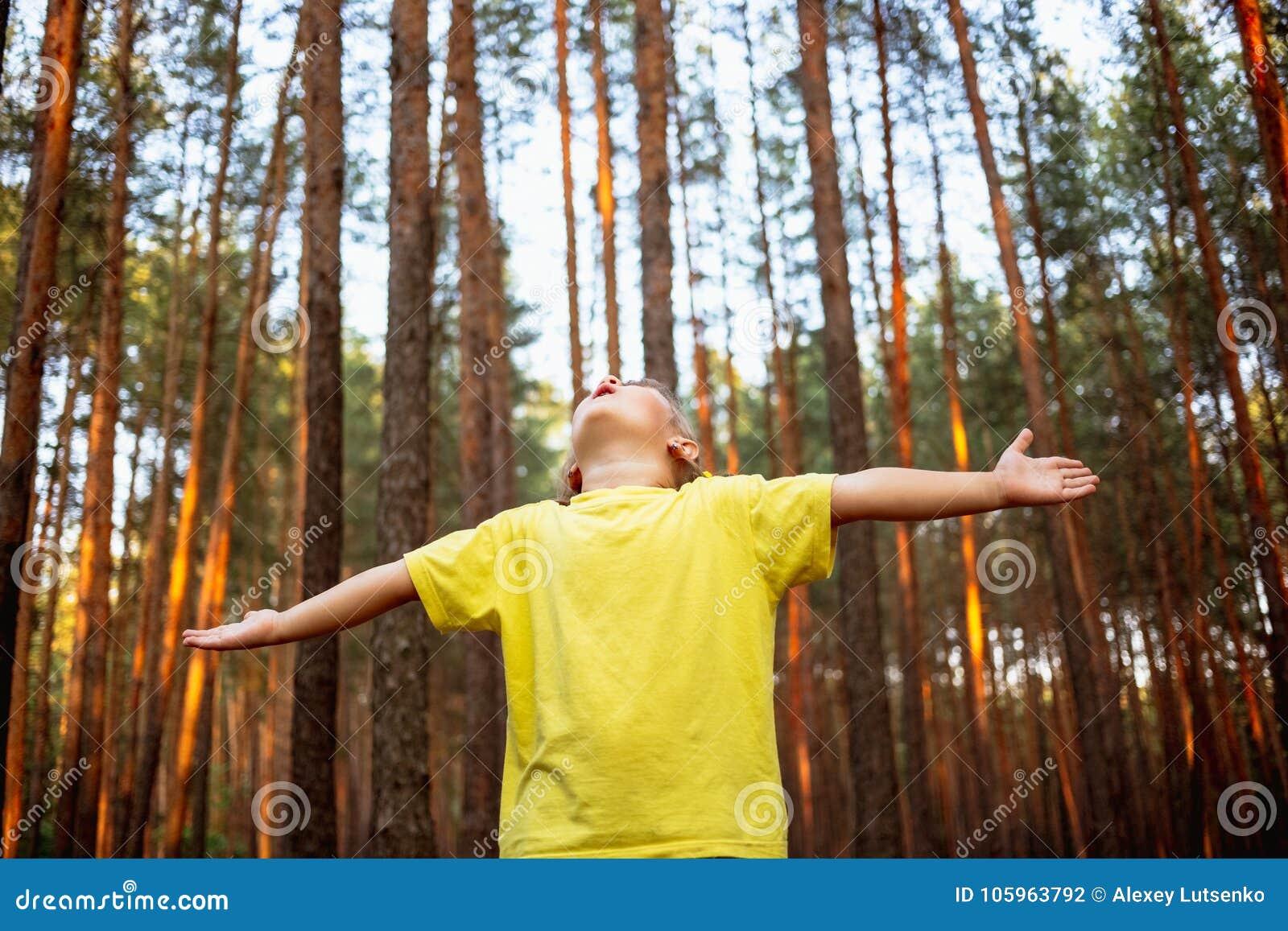 美丽的小女孩在杉木森林用手享受自然