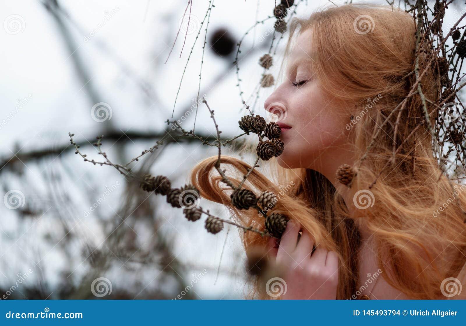 美丽的年轻性感的红发女孩喜欢微笑对捉住在杉木枝杈的杉木和她美丽的华美的红色头发