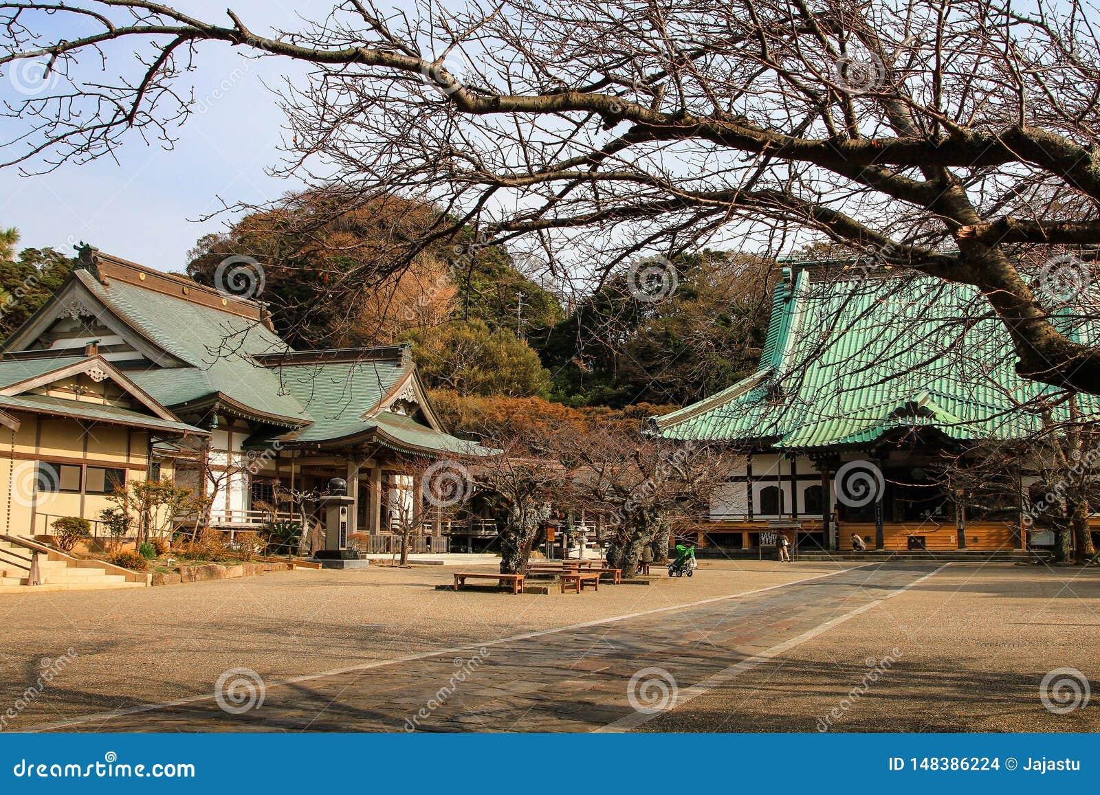 美丽的日本寺庙在镰仓