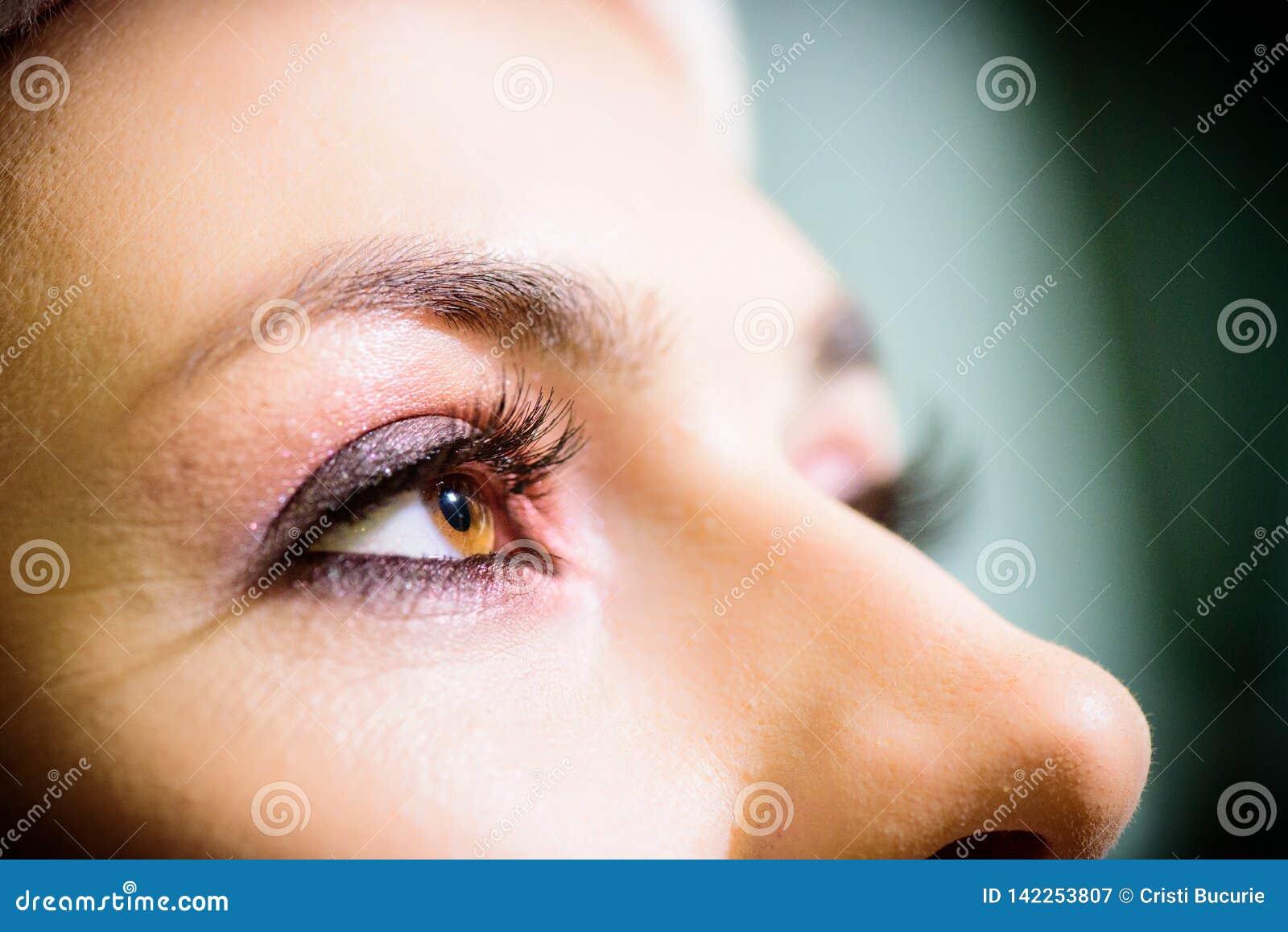 美丽的棕色眼睛特写镜头 构成时尚眼睛