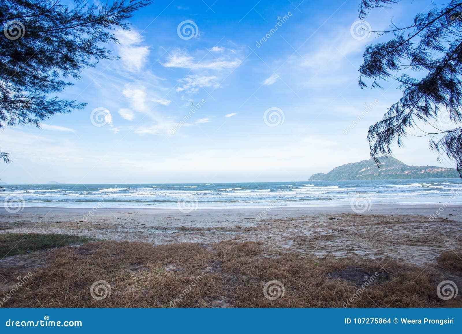 美丽的海滩惊人的看法  地点:甲米府泰国安达曼海 艺术性的图片