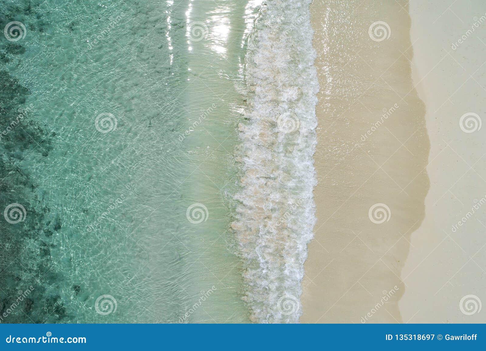 美丽的热带白色空的海滩和海挥动从上面看见 塞舌尔群岛海滩鸟瞰图