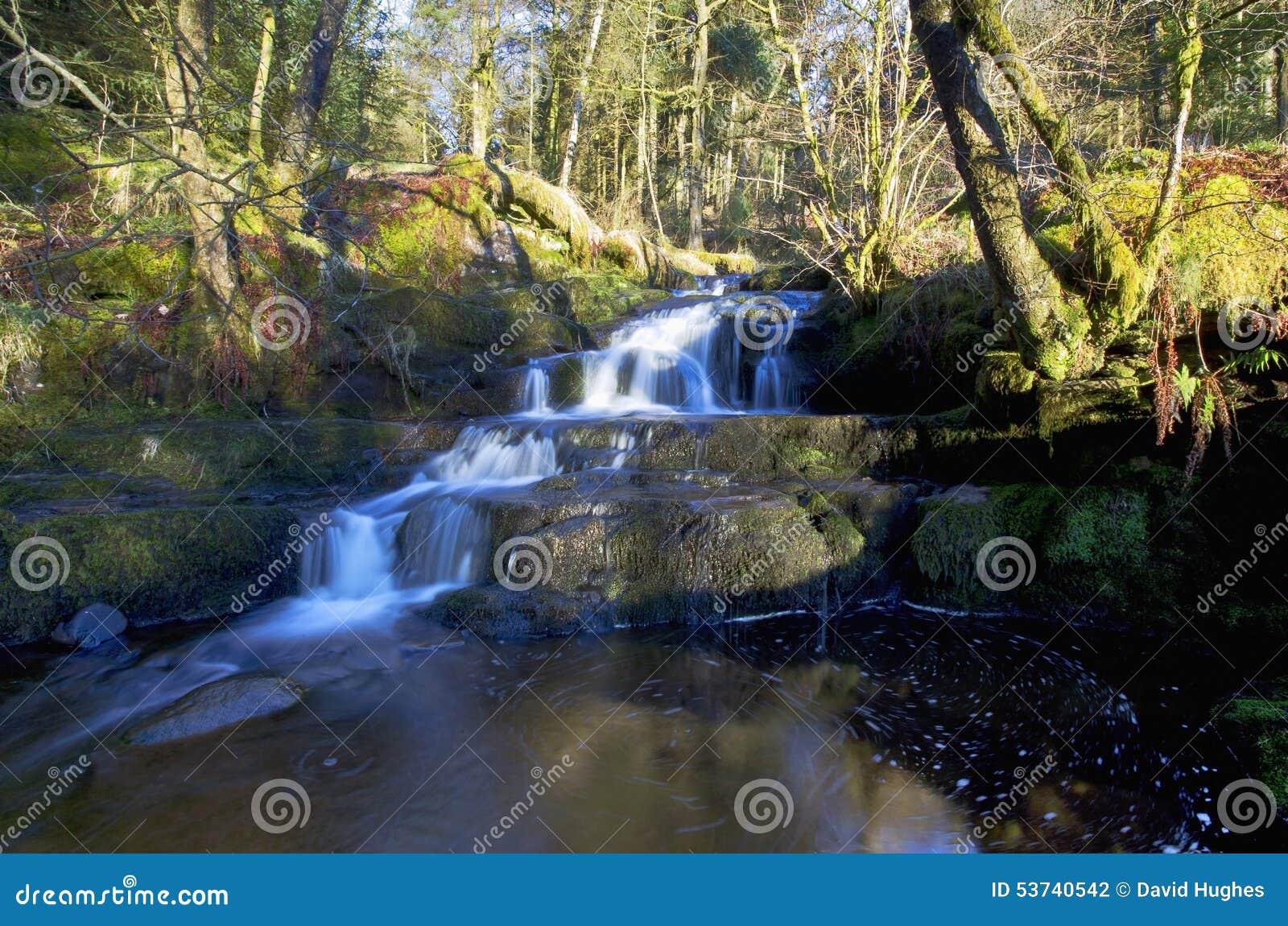 美丽的落下的瀑布, Nant Bwrefwy, Blaen-y-Glyn森林