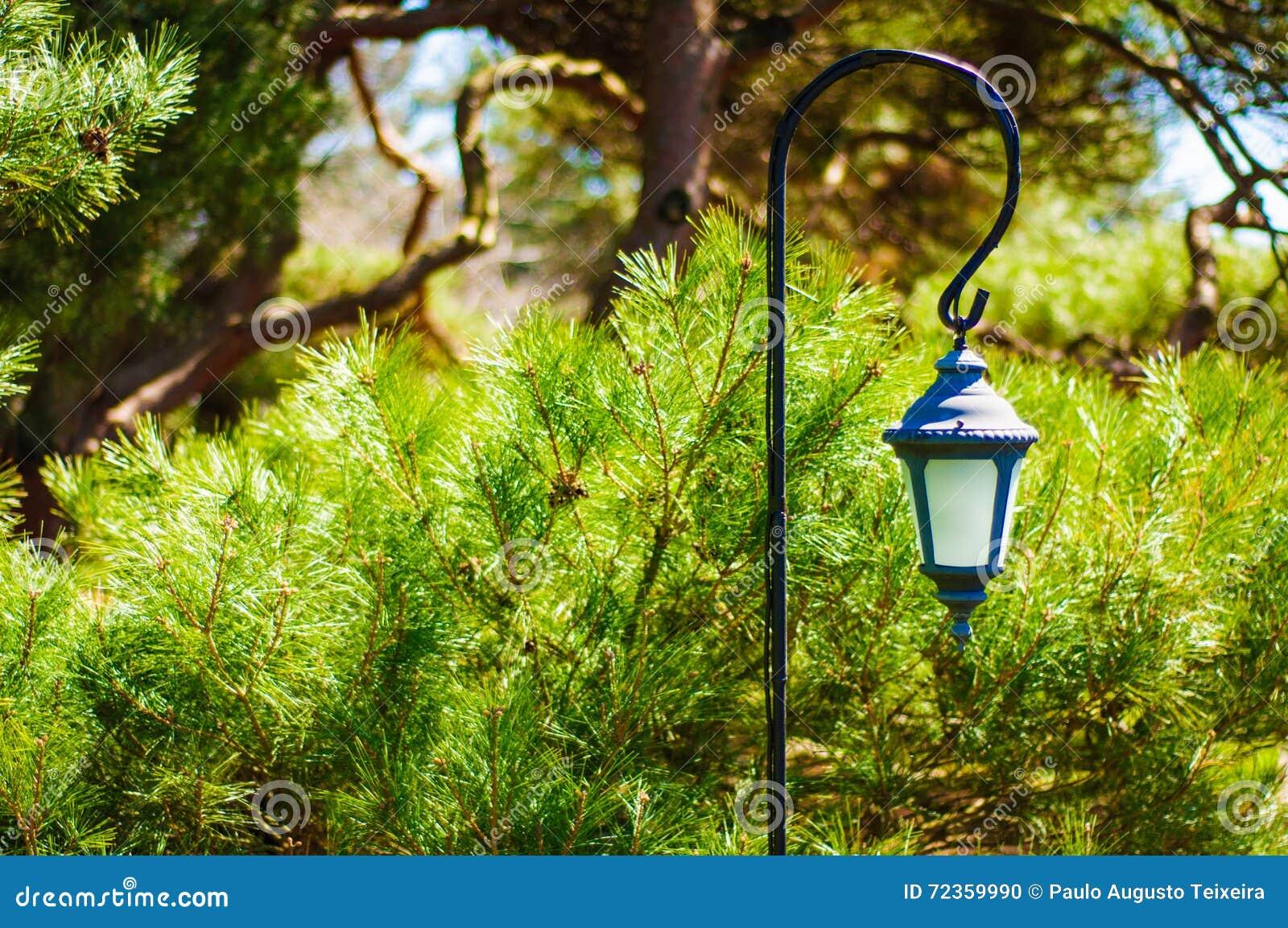 美丽的蜡烛台