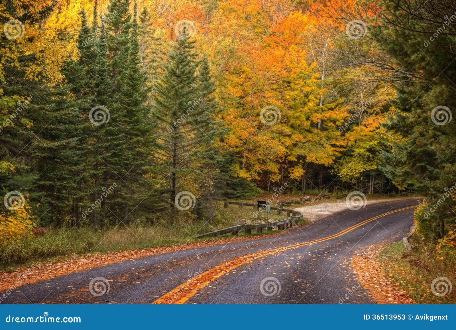 美丽的走道与秋天颜色在密执安美国
