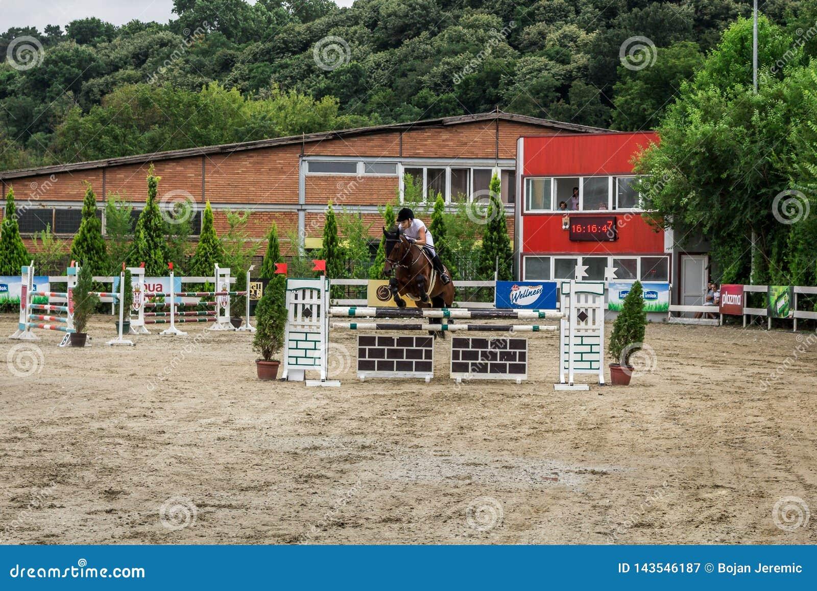 美丽的马和jokey在行动在跑马轨道用障碍设备在竞技场