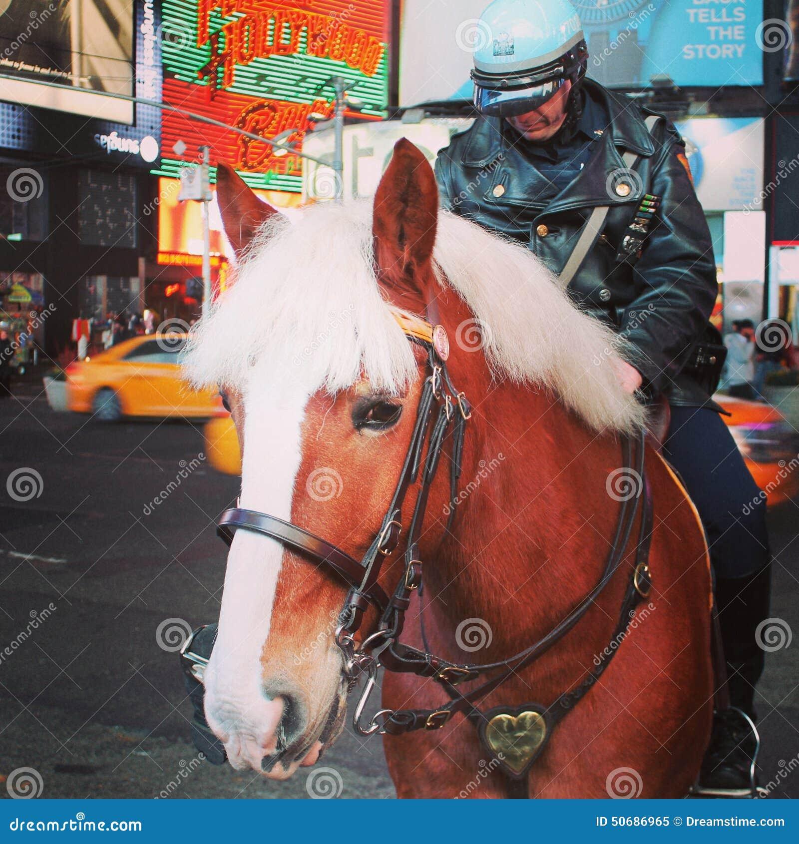 Download 美丽的马 编辑类图片. 图片 包括有 正方形, 警察, 时间, 阿斯马拉, beautifuler - 50686965