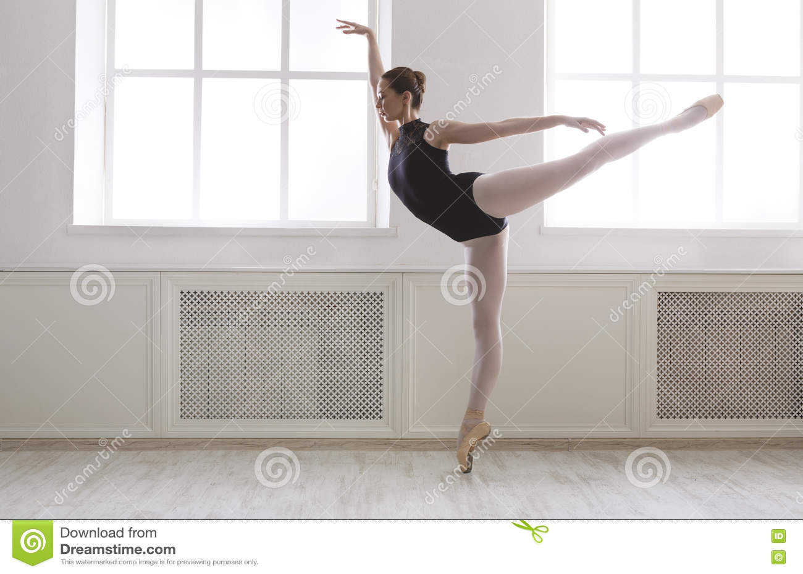 美丽的ballerine在蔓藤花纹芭蕾位置站立