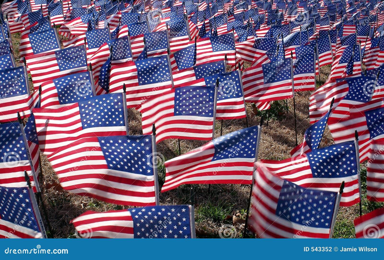 Download 美国国旗 库存照片. 图片 包括有 严格, 骄傲, 颜色, 国家(地区), 杀害, 纪念, 语句, 进贡, 停止 - 543352