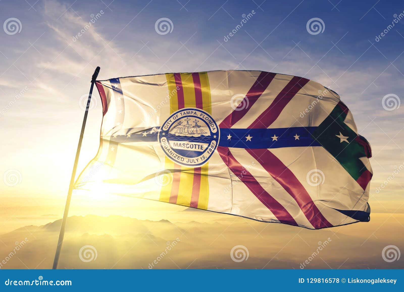 美国旗子纺织品挥动在顶面日出薄雾雾的布料织品坦帕市