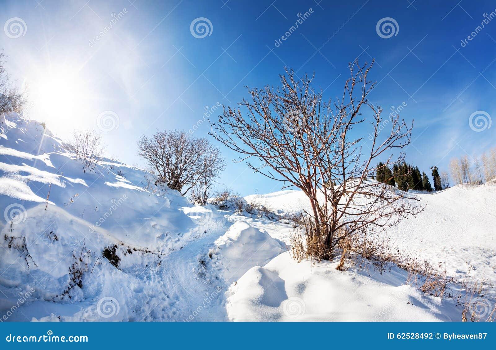 美好的冬天山风景