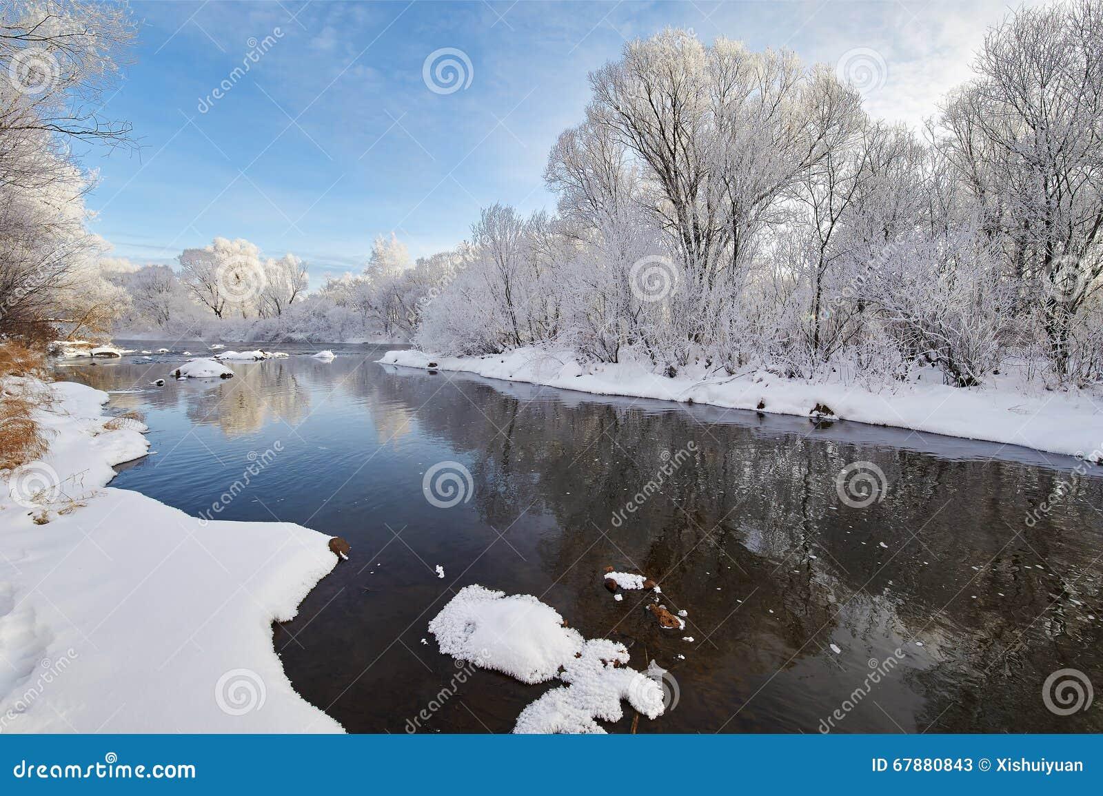 美好的冬天软的霜风景