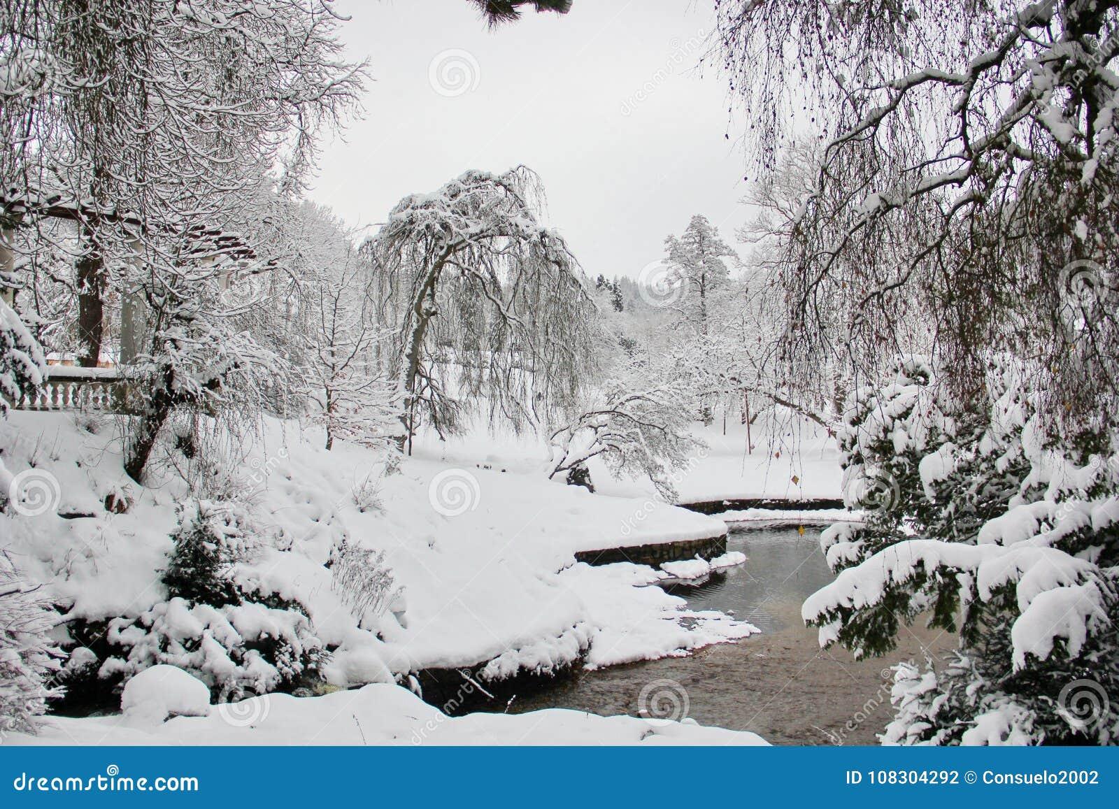 美好的片刻在英国庭院里在冬天