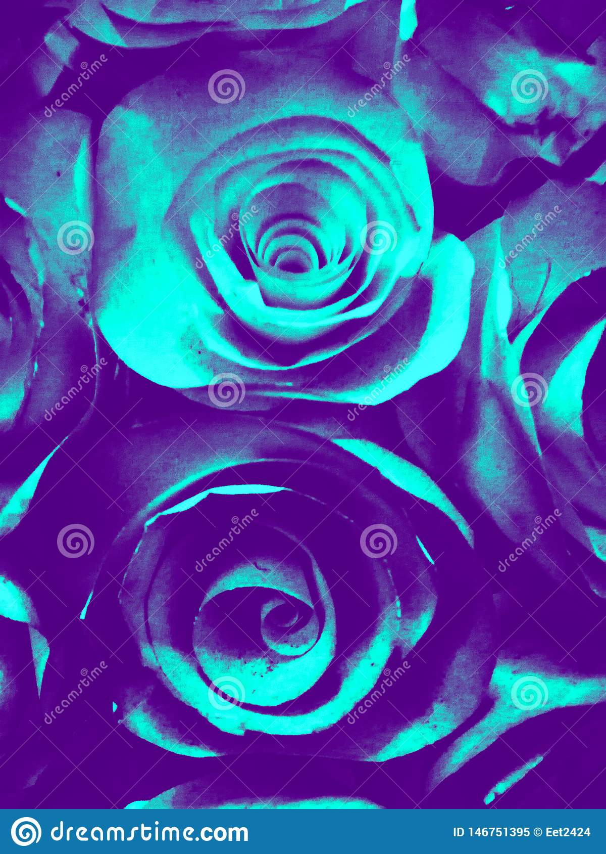美好的蓝绿色白色和黑玫瑰色花例证背景和纹理在庭院里