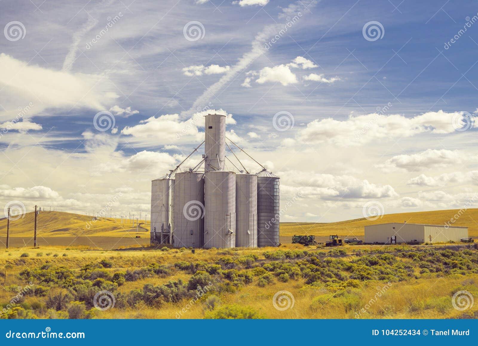 美好的麦田风景和一个大筒仓滚磨塔
